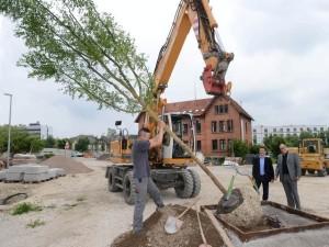 Bauleiter Urs Müller-Meßner und Stadthallen-Projektleiter Klaus Kessler (mit Sakkos, von links) sind wachen Auges dabei, als Mitarbeiter des Landschaftsbau-Unternehmens Meyer aus Villingen-Schwenningen den GEA-Leserbaum setzen. FOTO: Gerlinde Trinkhaus