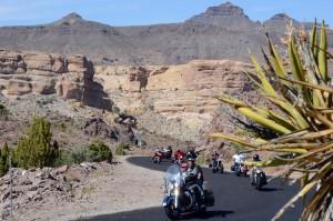Kakteen erinnern uns daran, dass wir in die Wüste fahren. Foto: co