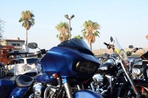 Harley unter Palmen: Die letzte Etappe wartet. Foto: co