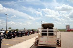 Pferde auf dem Trailer, links die Pferde aus Stahl.Foto: co